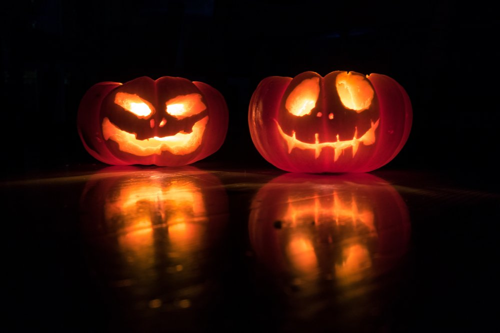 Pumpkins - Photo by David Menidrey on Unsplash