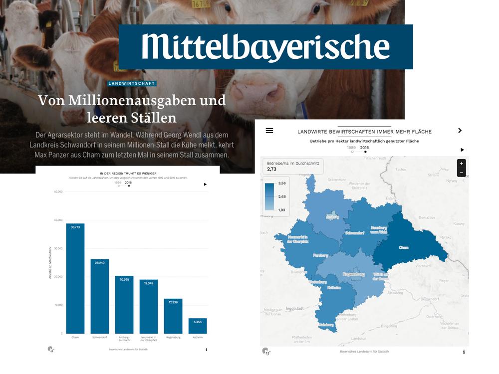 Von Millionenausgaben und leeren Ställen - Mittelbayerische Zeitung