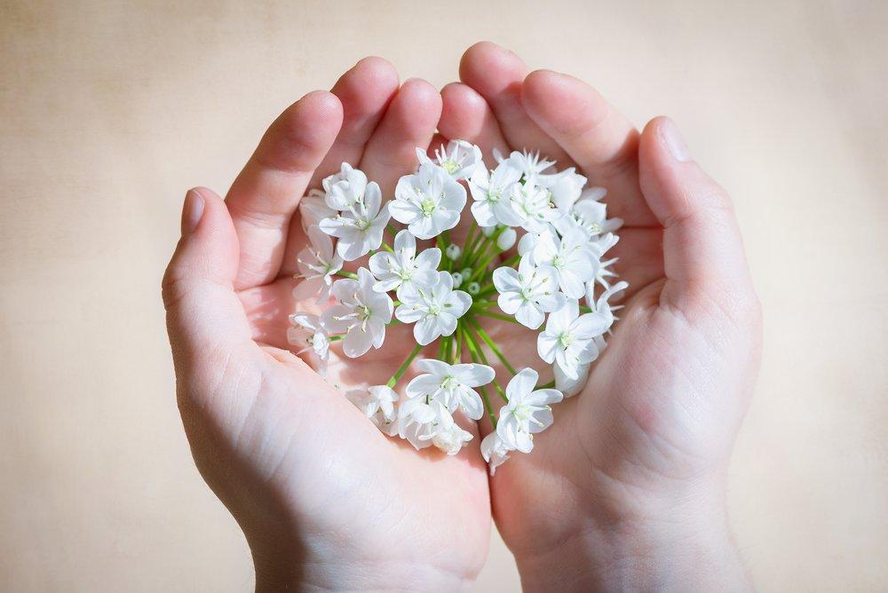bloom-blossom-flora-161552.jpg