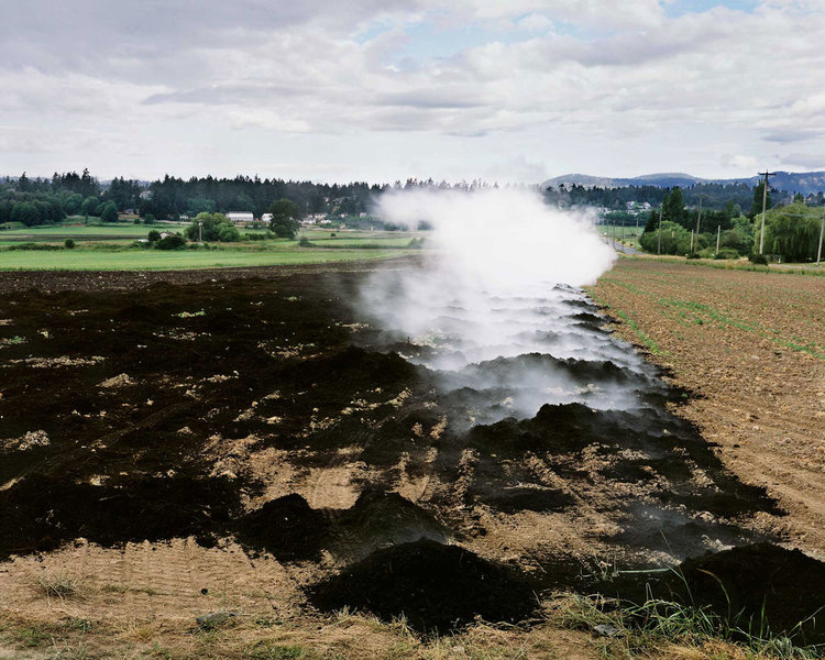 1_steaming-compost.jpg