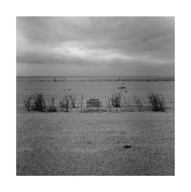 13f_08cndeg15_le_grand_littoral.jpg