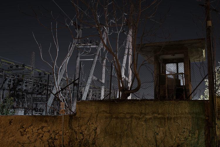 dark_tree-8.jpg