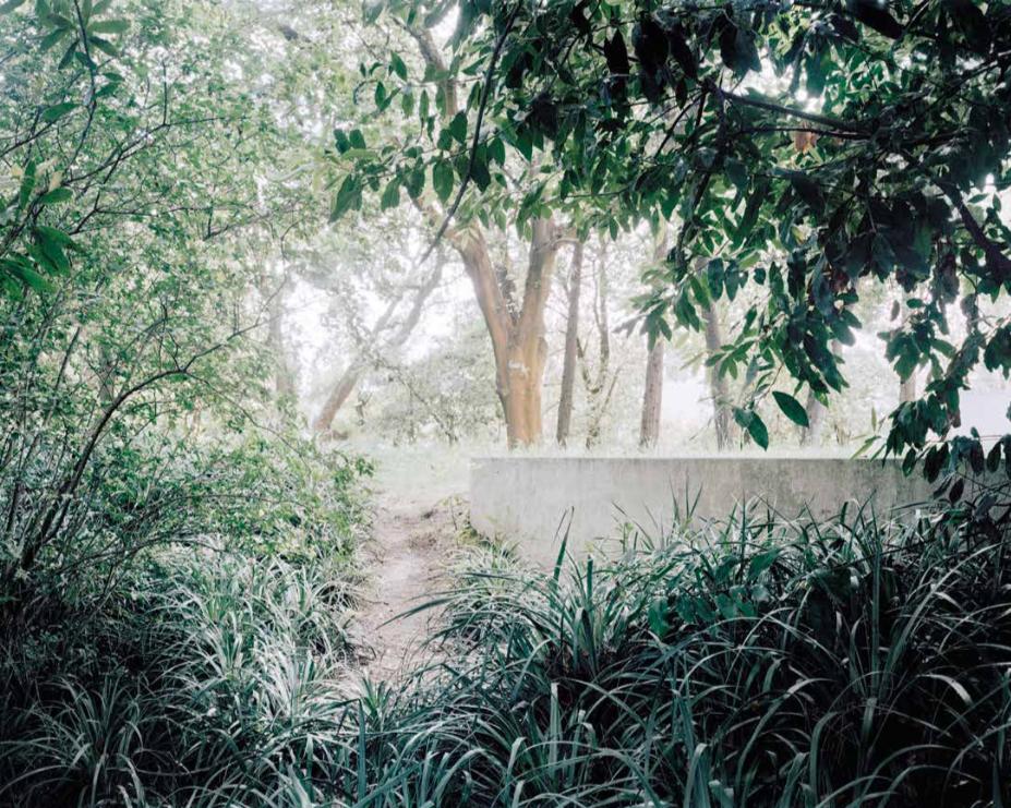 Álvaro Siza - Fotografia Documental e Artística: Um olhar contemporâneo sobre a arquitetura portuguesa