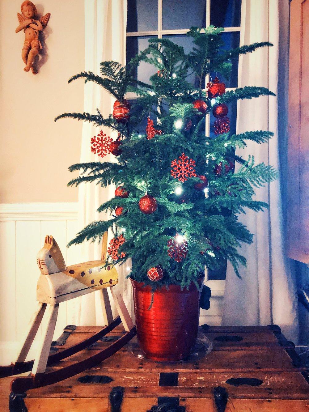 Heidi's first Christmas.