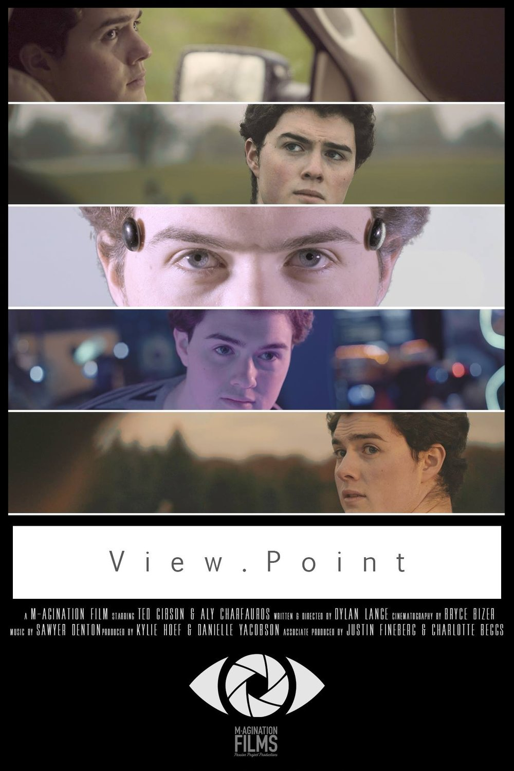 Viewpoint Poster.jpg