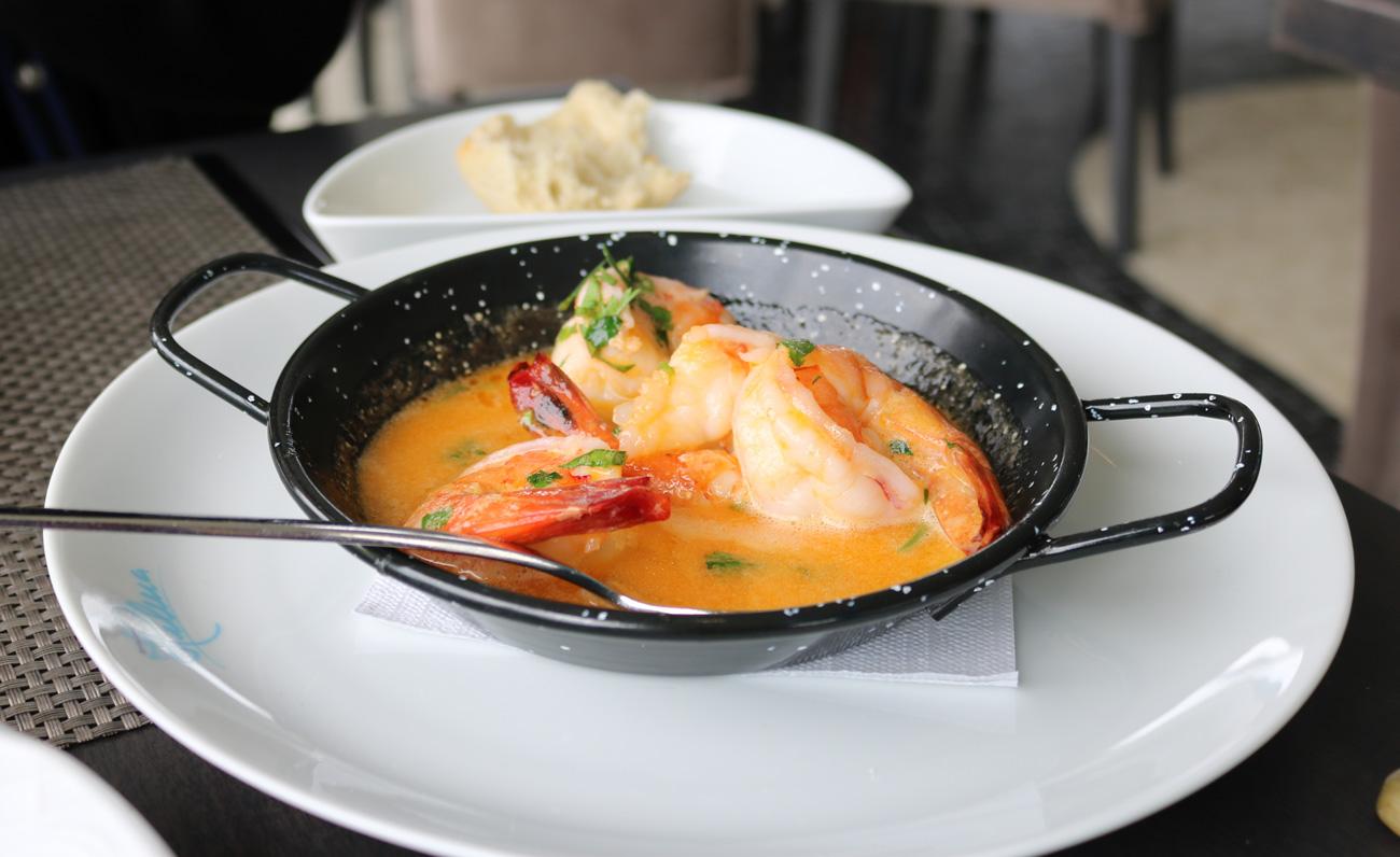 Portus 360 - Shrimp