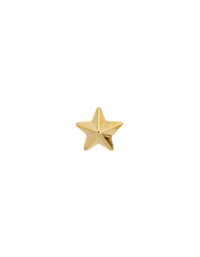 Gold Ribon Star .png