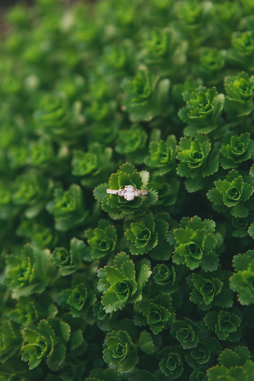 Joe_Mac_Creative_Wedding_Engagements_Photography_Philadelphia_Broad_Street_Proposal_0021.jpg