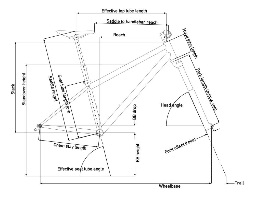 Goshawk-Geometry-Drawing.png