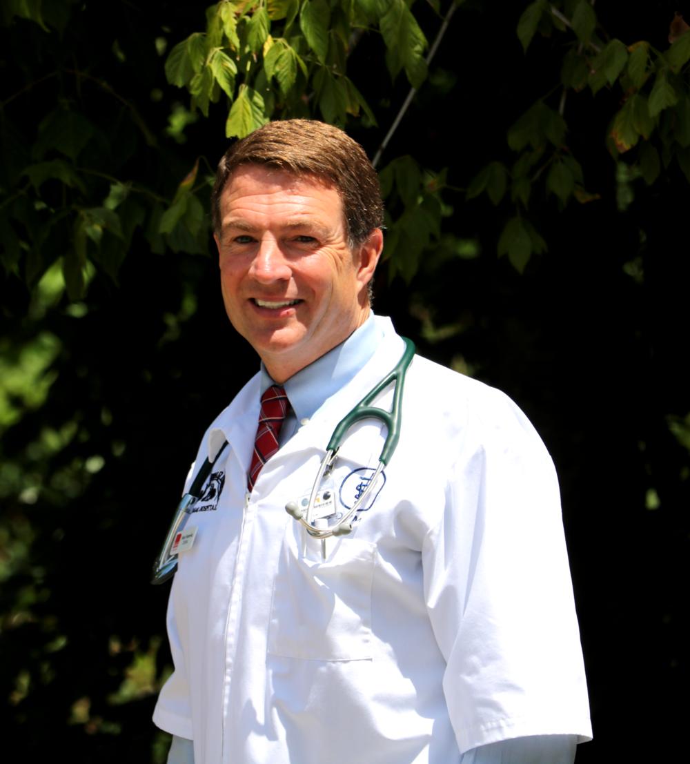Dr. Hamryka