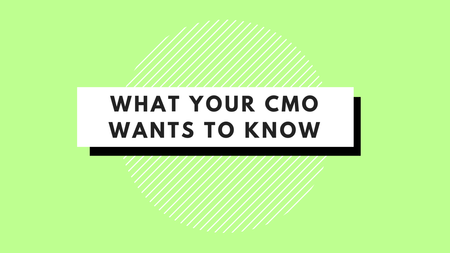 What Your CMO Wants to Know