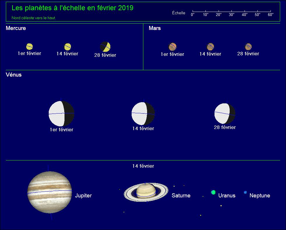 Les planètes à l'échelle pour le mois de Février 2019