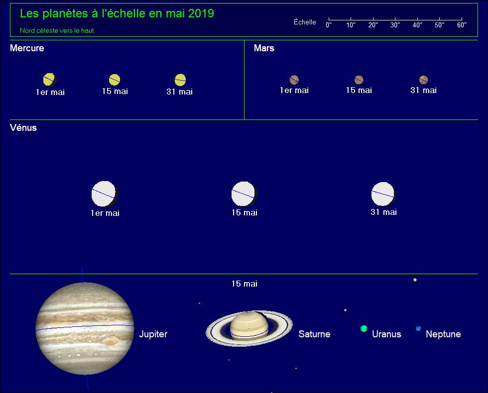 Les planètes à l'échelle pour le mois de mai 2019