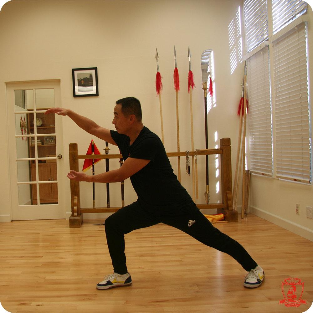 Master Yun Internal Pose.jpg