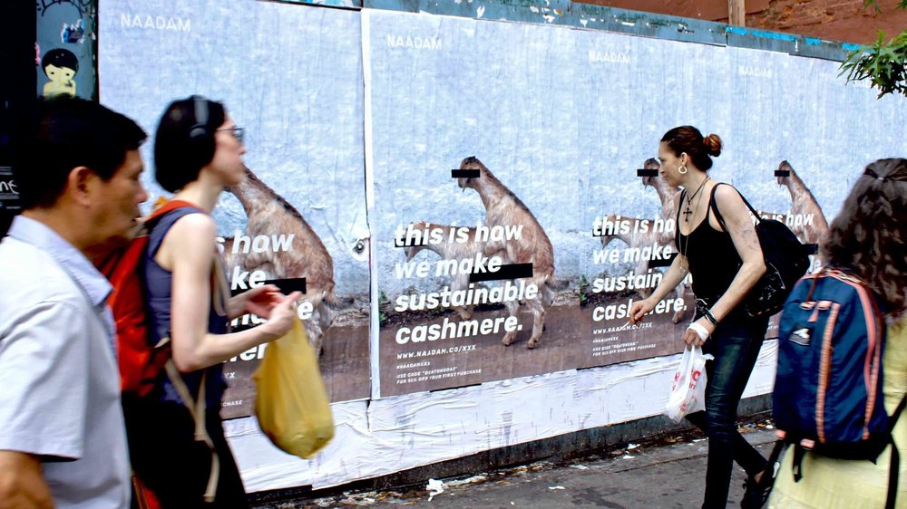 "Naadam's out-of-home campaign in NYC last fall ""highlighting"" their breeding work in Mongolia"