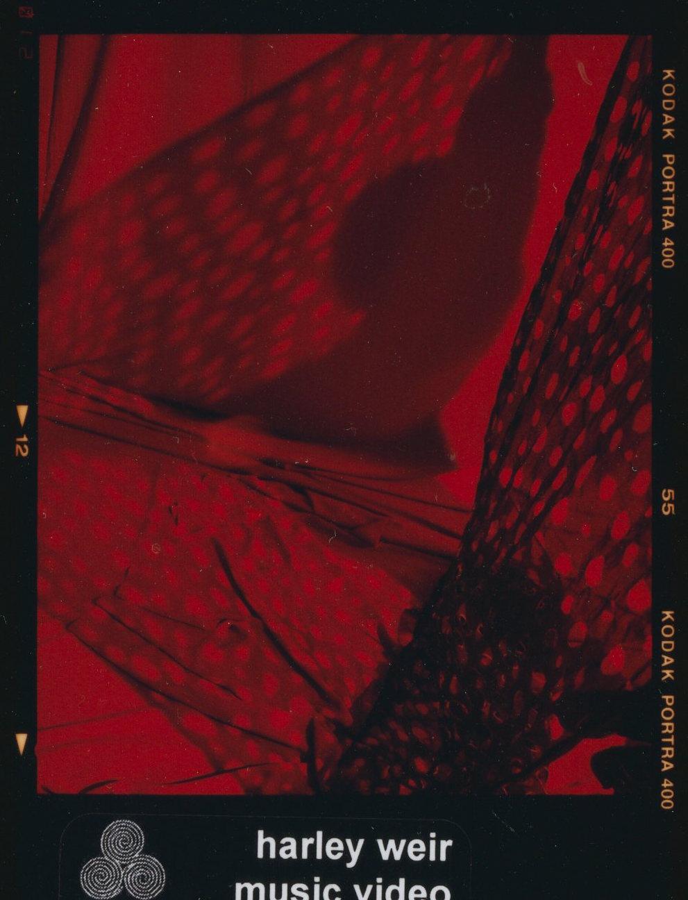 HW_181213_21010 copy.jpg