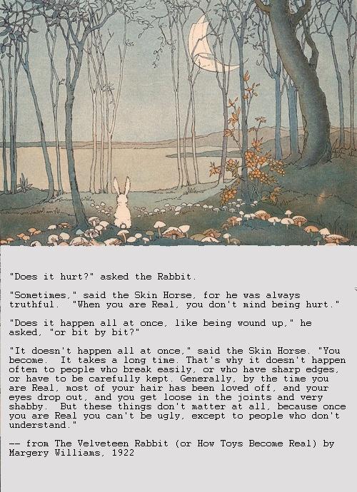 moon pic velveteen rabbit w text