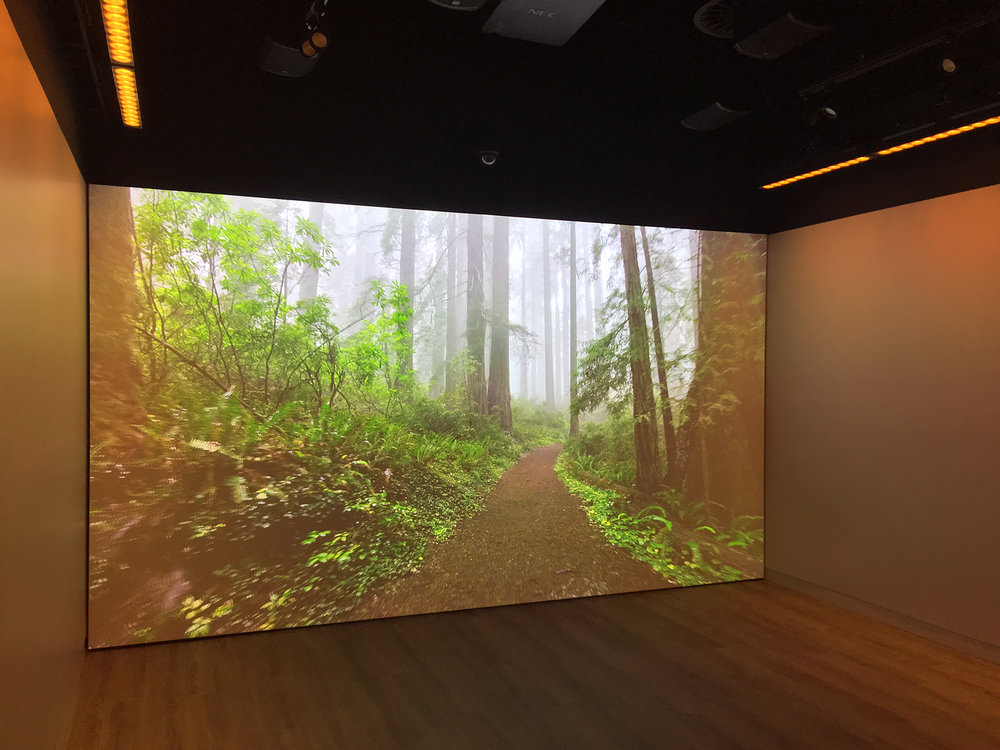 The experience of the video component of the room is highly emotive and impressionable, and with a powerful sound system and the ability to effect the climate as well, this is no ordinary AV experience.
