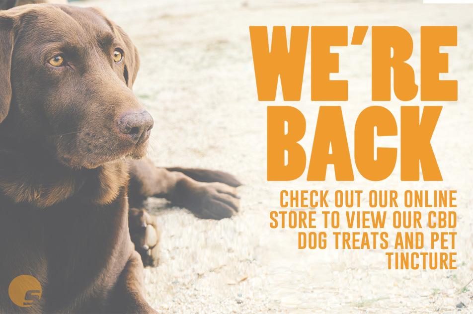 simple-cbd-advertisement-dogtreats-september2018-no discount.jpg