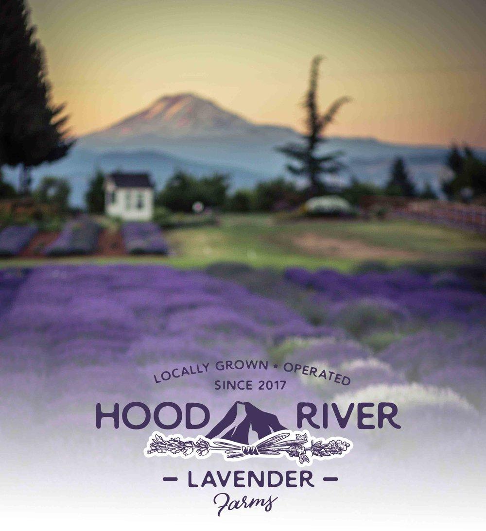 Hood River Lavender Farms Columbia Gorge buy lavender online hood river odell portland pacific northwest pnw creams lavender_-42 alt .jpg