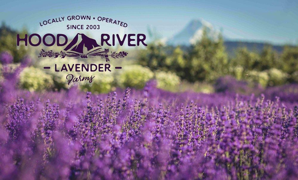 Hood River Lavender 3Farms Columbia Gorge buy lavender online hood river odell portland pacific northwest pnw creams lavender_-3.jpg