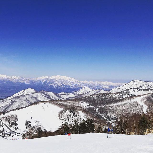 志賀高原は2月の雪質、最高のコンディションです!! #shigakogen #ski #sachinoyuhotel #癒しの宿幸の湯 #nagano