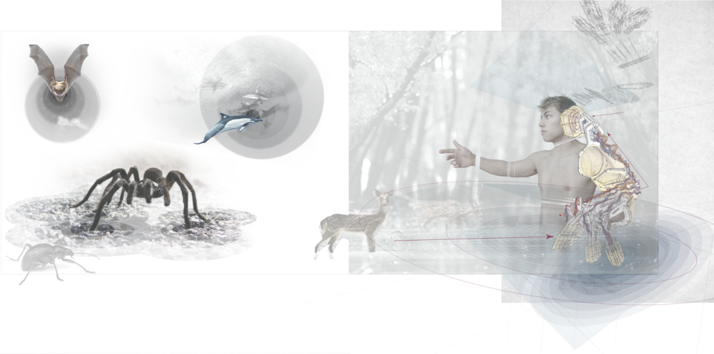 Digital_Portfolio_Hearing_Touch-01.png
