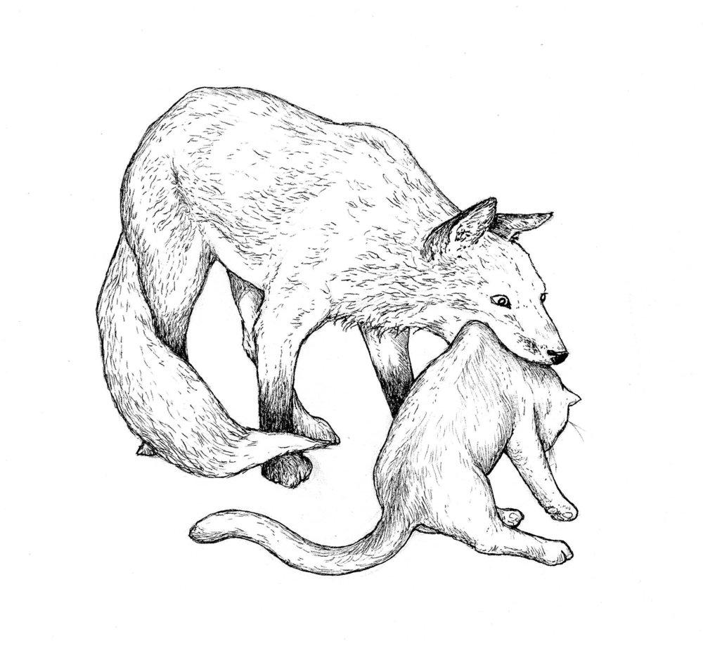 fox&kit.jpg