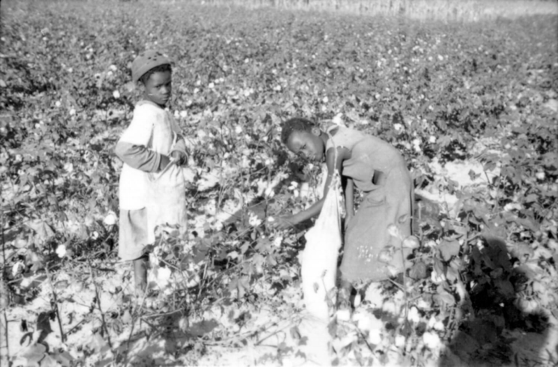 Photo by Louis Boyle. Courtesy of The Kheel Center for Labor-Management Documentation and Archives