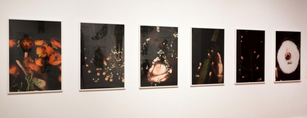 "Paloma Mayorga,  Poderosa (Powerful) ,  Mia (Mine) ,  Con su dulce miel (With her sweet honey) ,  Mano llena (Handful) ,  Ansiedad (Anxiety) , and  Labios salados (Seasoned lips) , Digital C Type prints, each 45"" x 30,"" various years (2014-2017)"