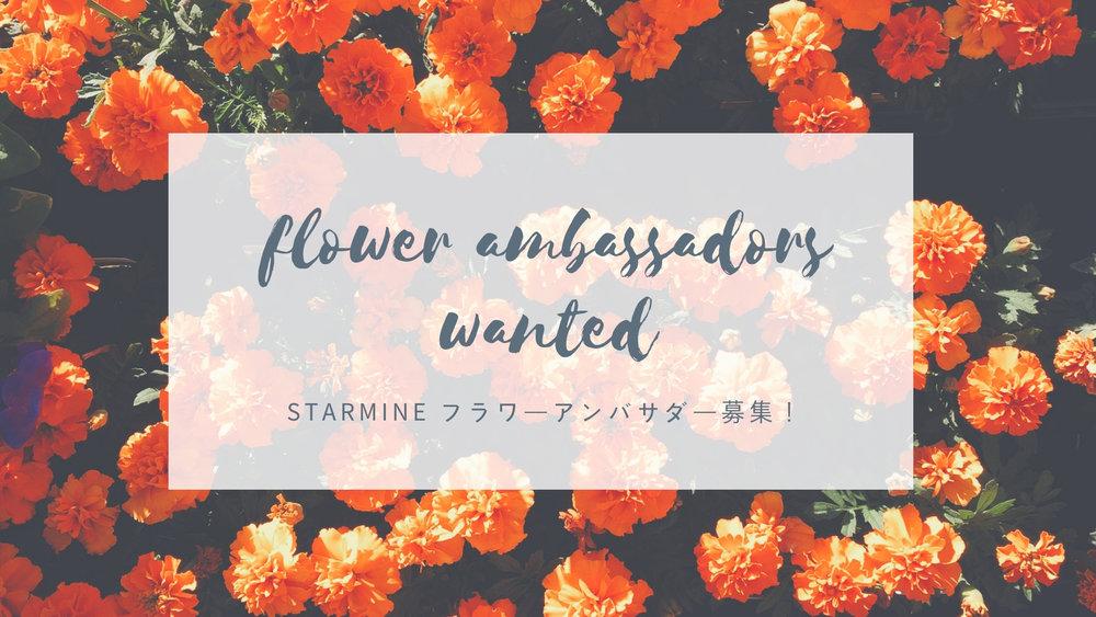 flower ambassadorswanted..jpg