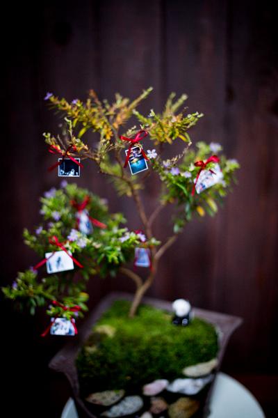 boda-entrega-bonsai-irun-sceneinlove -4.jpg