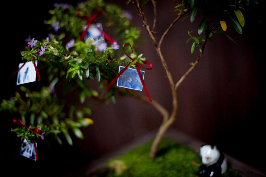 boda-entrega-bonsai-irun-sceneinlove -5.jpg
