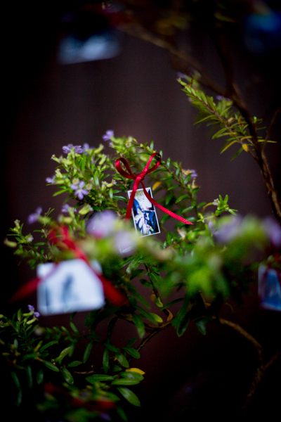 boda-entrega-bonsai-irun-sceneinlove -6.jpg
