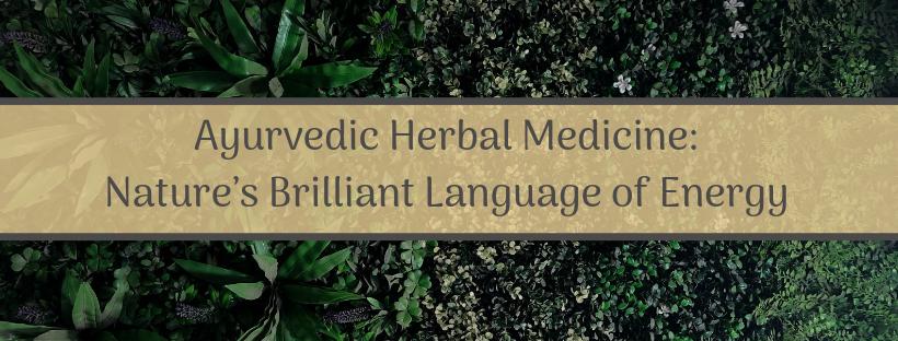 Ayurvedic Herbal Medicine_ Nature's Brilliant Language of Energy Banner (2).png