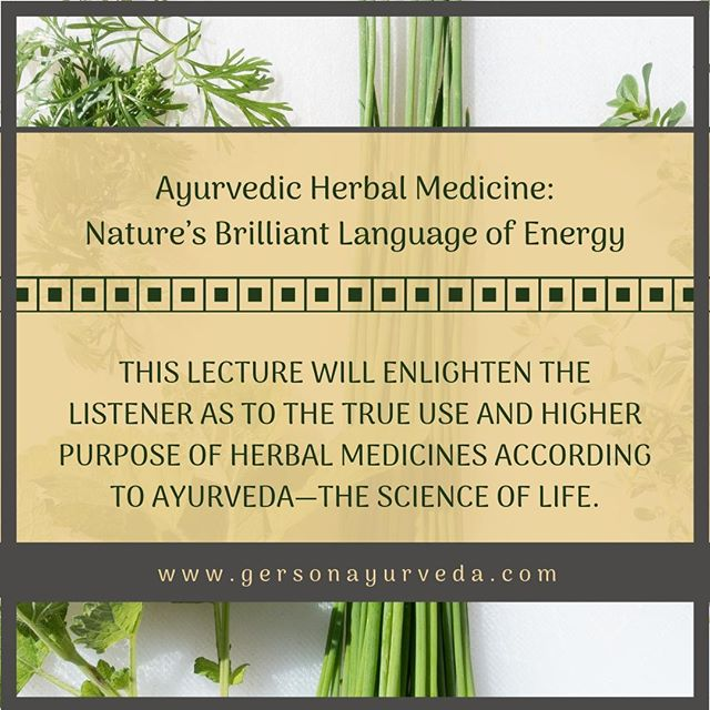 """Join Dr. Scott Gerson on January 10, 2019 for Ayurvedic Herbal Medicine: Nature's Brilliant Language of Energy. ⠀ ⠀ """"Ayurveda understands that an individual's energetic field is not isolated from the environment. As it radiates """"out"""", it interacts with other energies which are radiating """"in"""", be it another human being, a pine forest, a city street…or a medicinal plant. Ideally there is a mutually beneficial exchange. The energetic fields harmoniously blend resulting in each becoming more coherent and stronger. Ultimately, all healing is self-healing. No medicine, machine, herb, or supplement alone has ever cured anything. If healing is observed to occur, the mind-body has cured itself.""""⠀ ⠀ To Learn More Visit: https://buff.ly/2LlsbXB⠀ ⠀ #ayurveda #ayurvedicmedicine #ayurvedicdoctor #herbs #herbals #energy #energymedicine #integrativemedicine #integrativedoctor #holistic #holistichealth #wellness #india #orlando #florida #event"""