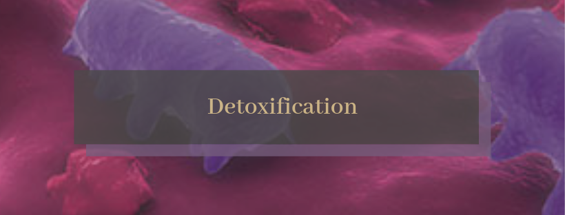 Detoxification.png