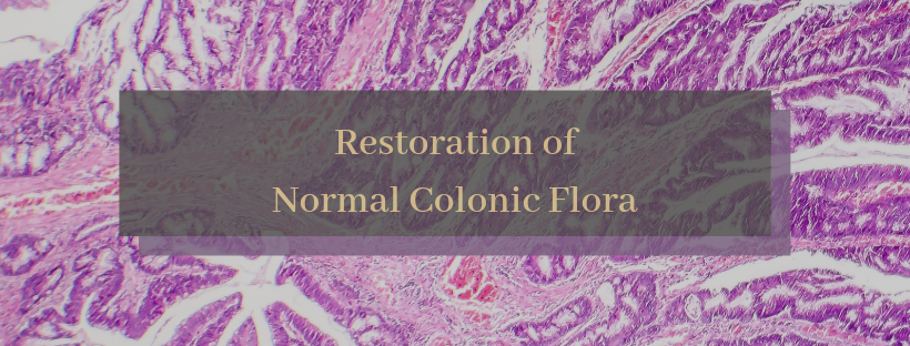Normal Colonic FLora.png