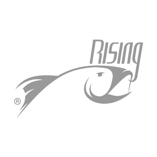 Partners rising.jpg