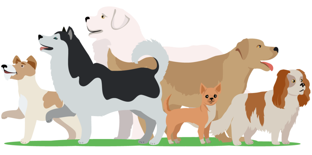dogs-vectorstock_11217738-[Converted].png