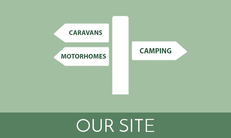 Our-site2.jpg