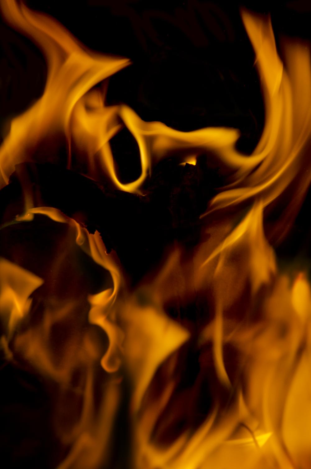 fire bat.png