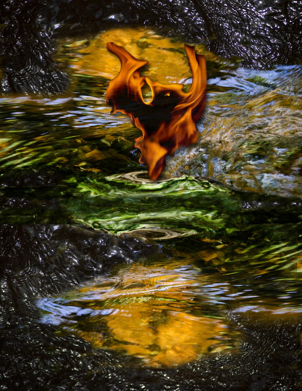 composite_bat_vortex.png