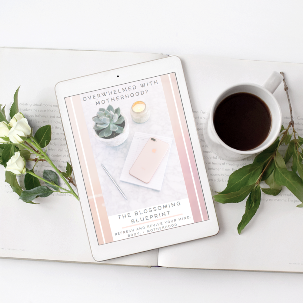 It's Time For You To Conquer The Overwhelm, Momma! - Grab Your BMAB Blueprint to Refresh and Revive your Mind, Body, and Motherhood!