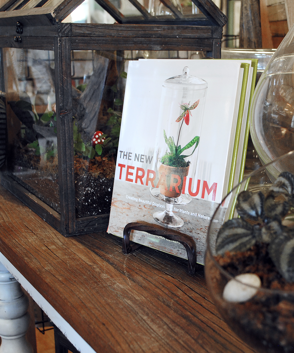 The New Terrarium  paired with our own custom terrariums.