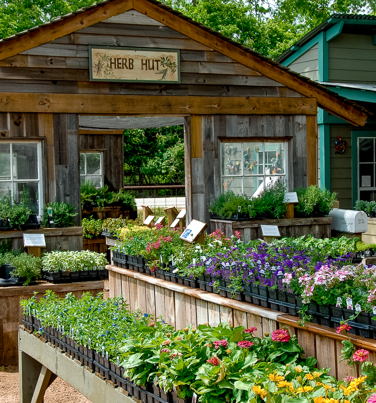 Enchanted forest - Hidden away beneath beautiful Texas native trees, the Enchanted Forest is a retail garden center that boasts many picturesque garden vignettes.