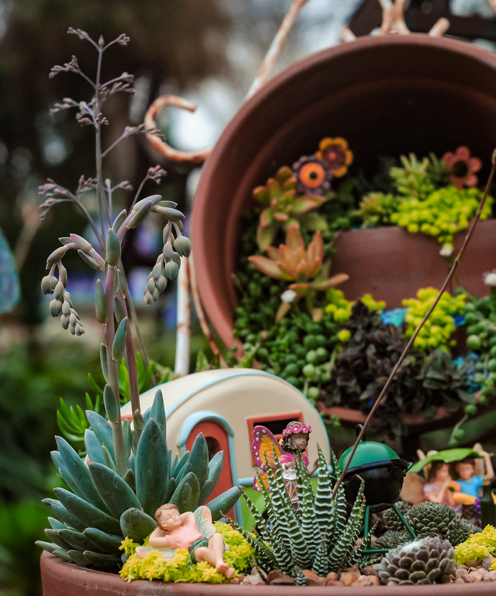 Both nurseries have elaborate fairy gardens planted in the landscape to inspire visitors and add to the enchantment. Pictured above: A resident fairy garden at  Enchanted Gardens  designed by our own Maria Cruz. #mariamakesitenchanted