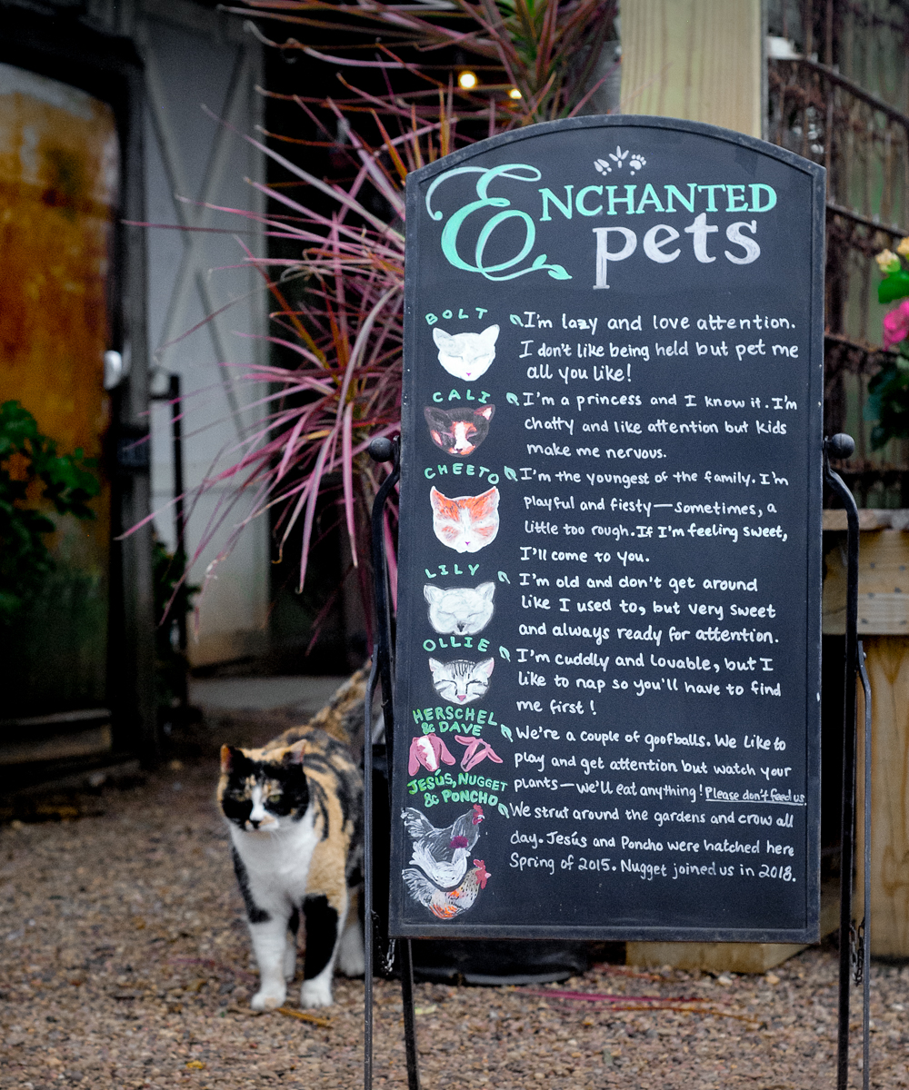 Our Enchanted Pets sign at  Enchanted Gardens  ( featured in Green Profit Magazine ) cleverly teaches customers about our pets' individual personalities and how to best approach each one. It's great at keeping the kiddos busy trying to locate all the animals while the parents do some serious shopping!