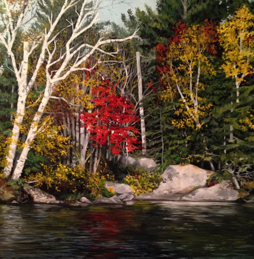 "red birch, 2013, oil on canvas, 30"" x 30"""