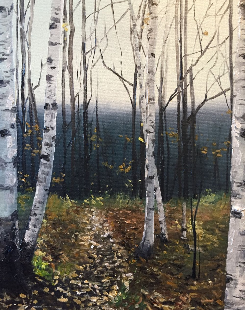 "beyond the birch, 2016, oil on canvas, 11"" x 14"""